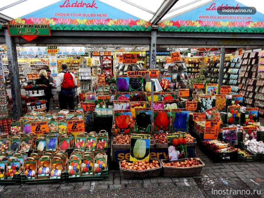 цветочный рынок с тюльпанами