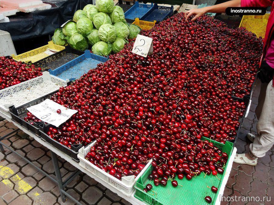 цена черешни на рынке в Болгарии