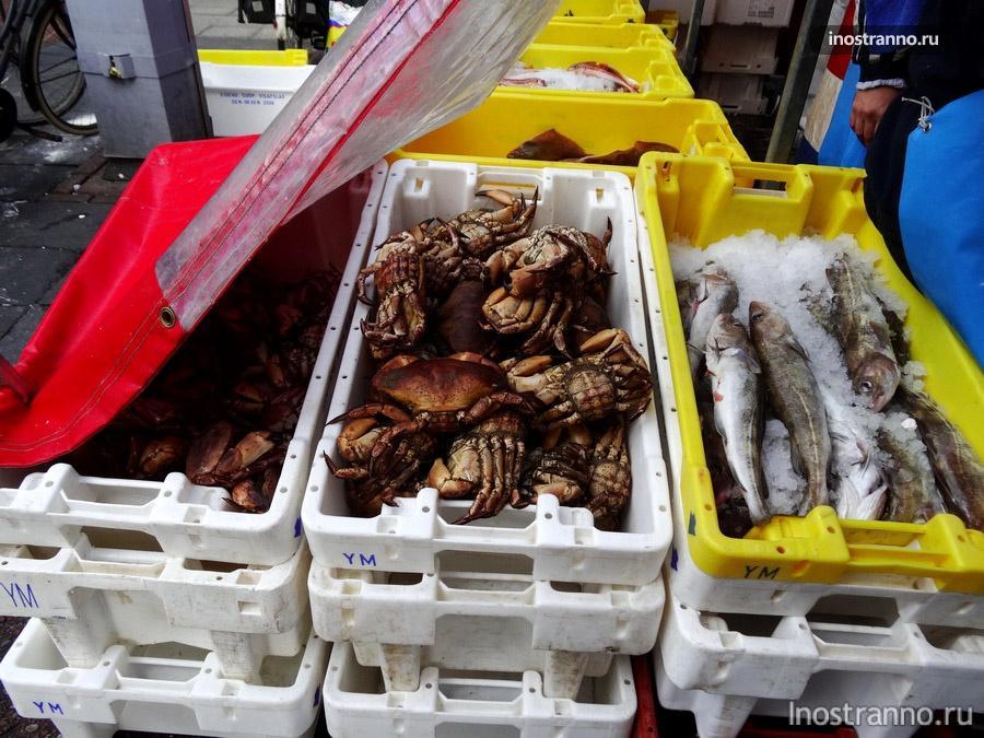крабы на рынке в Голландии