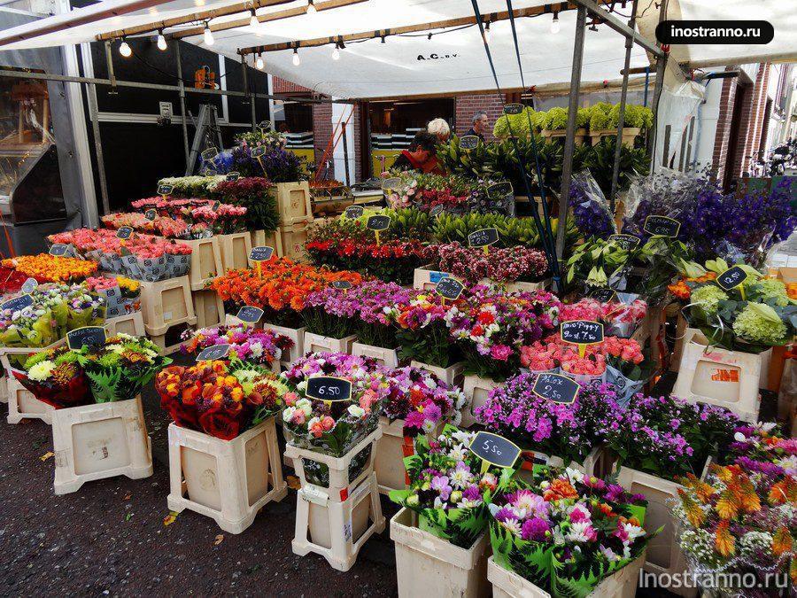 Рынок Альберт Кёйп в Амстердаме