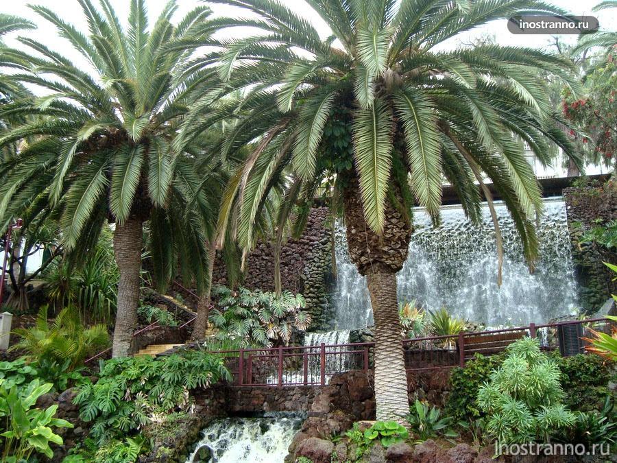 парк на канарах Parque de la Sortija