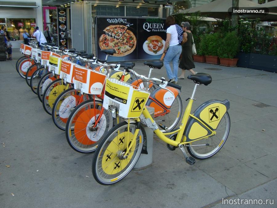 прокат велосипедов в Германии