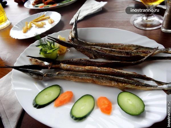 Болгарская рыба зарган