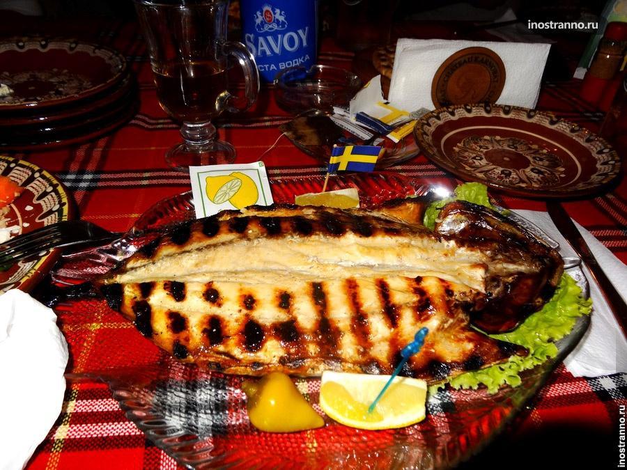 болгарская рыба