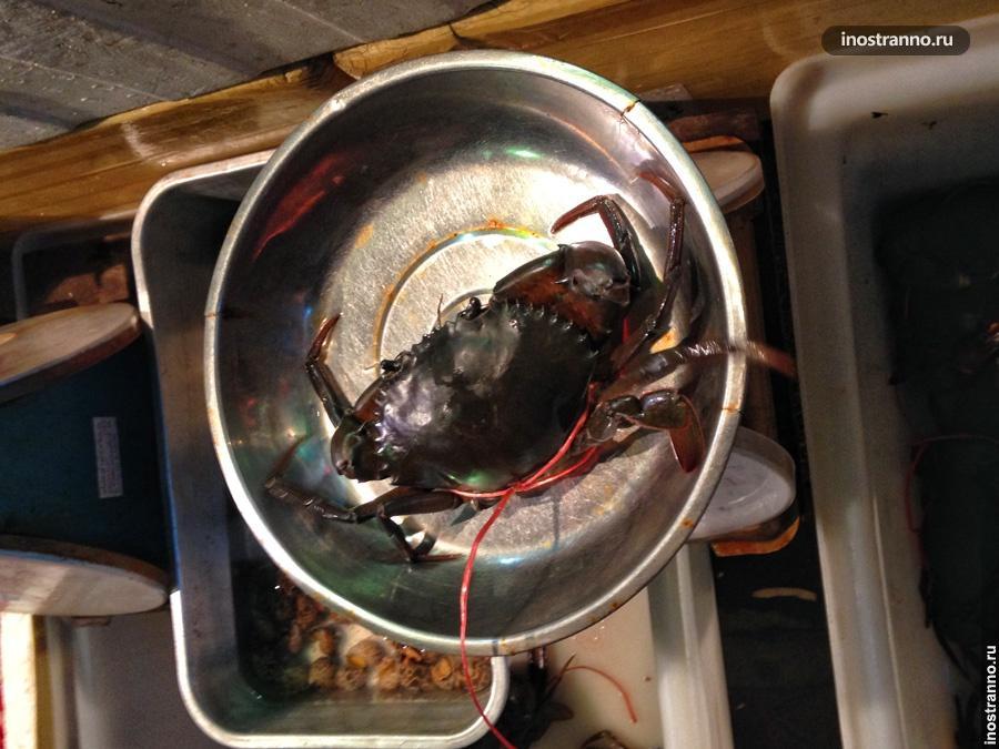 краб морепродукты тайланд