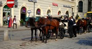 Что посмотреть в Вене — Достопримечательности Вены
