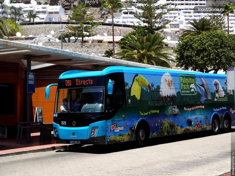 Междугородний автобус на Гран-Канарии