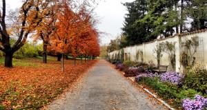 Чехия осенью