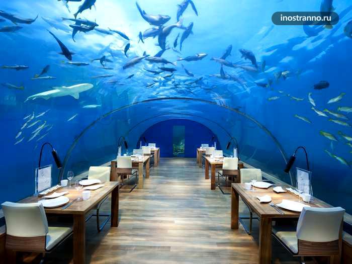 отель на мальдивах с подводным рестораном