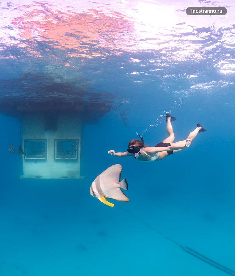 подводный отель танзания