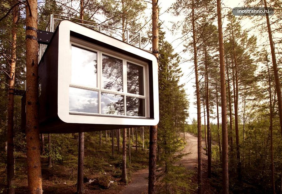 отель в деревьях швеция