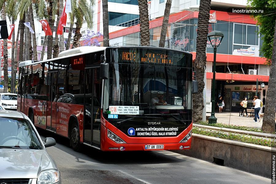 Анталия автобус