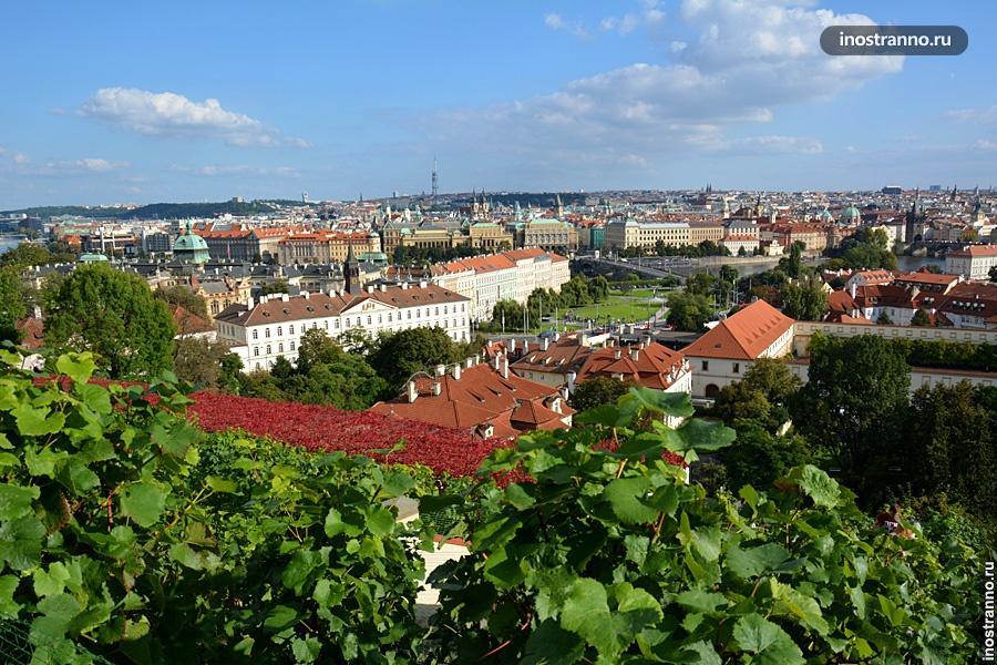 Обзорная площадка в Праге из Пражского града