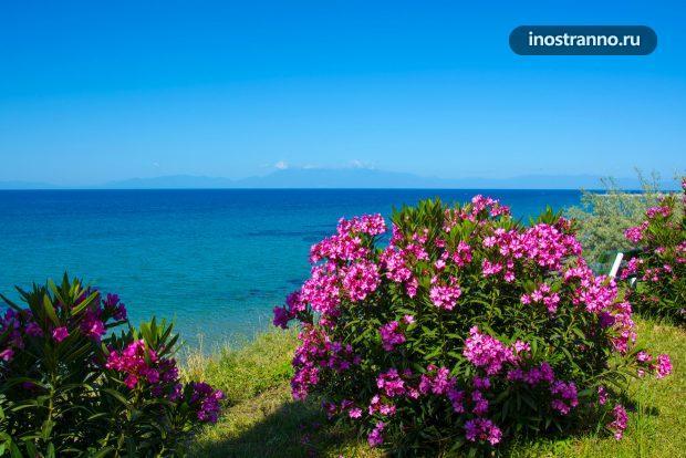 Греция, панорама, море