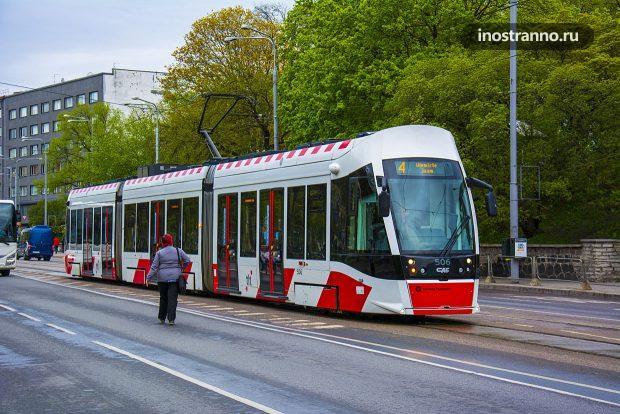 Трамвай в Эстонии