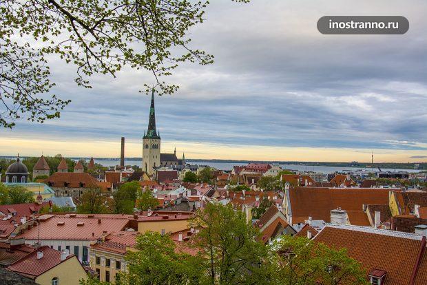 Панорама Таллина