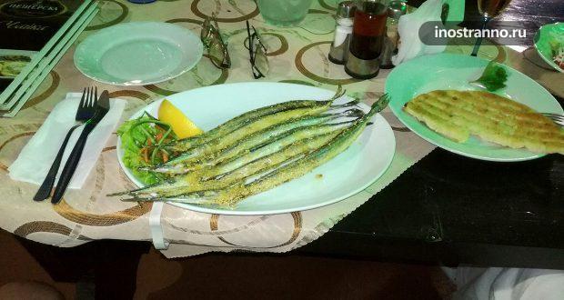 Какую черноморскую рыбу стоит попробовать в Болгарии?