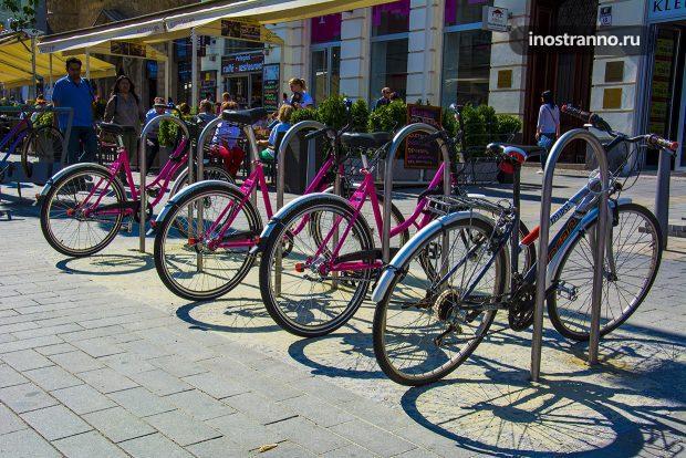 Аренда велосипедов в Чехии
