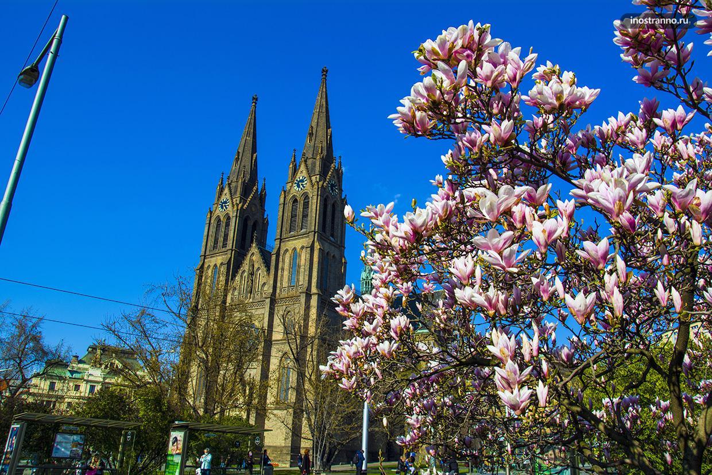 Площадь мира в Праге весной