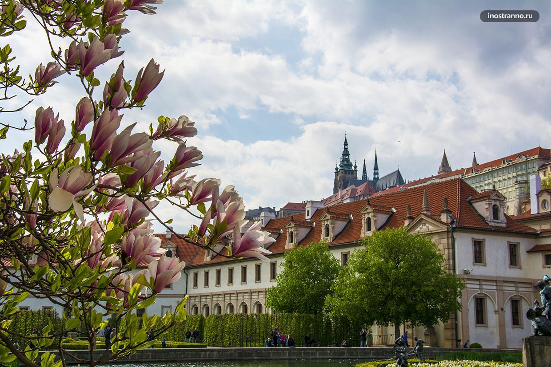 Вальдштейнский сад в Праге