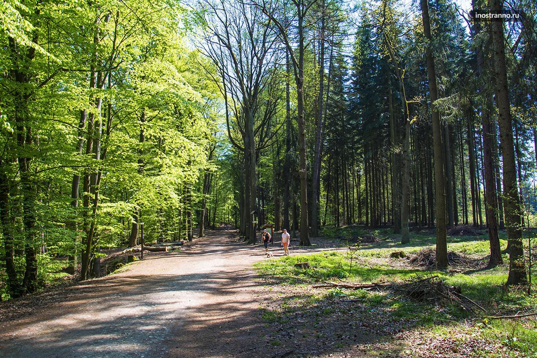 Национальный парк Чешский рай
