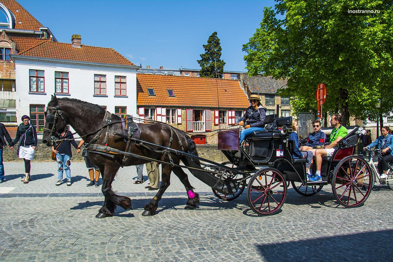 Прогулка по Брюгге на лошади