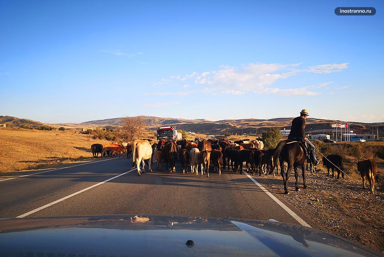Пробки на дорогах Грузии