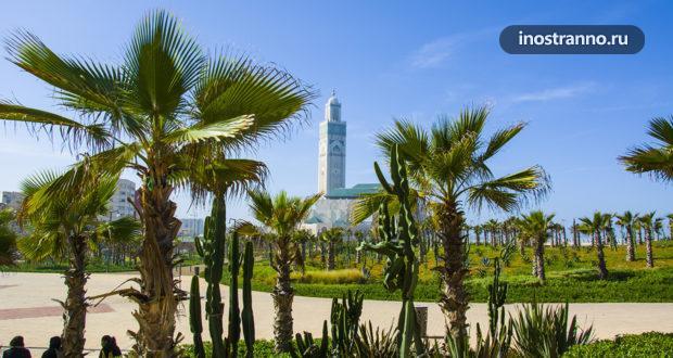 Касабланка – город с разных ракурсов