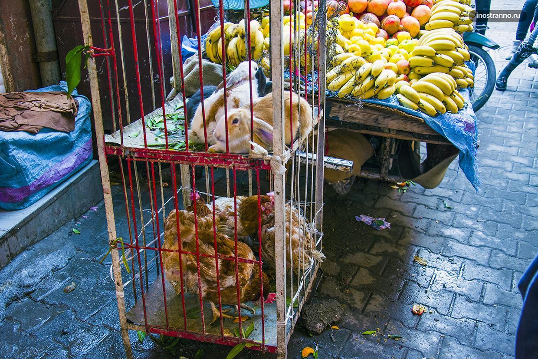 Мясо на рынке в Марракеше
