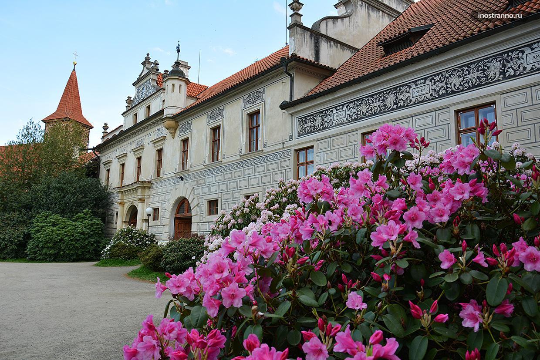 Замок Пругонице Прага весна