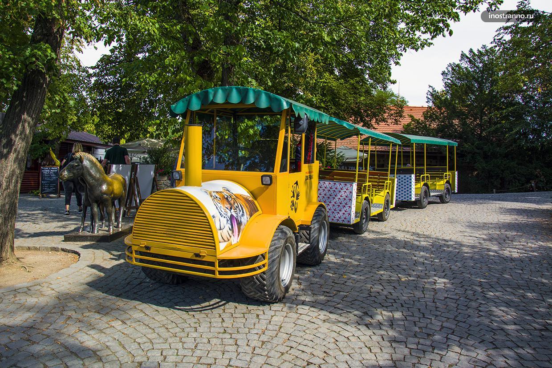 Развлечения для детей в зоопарке