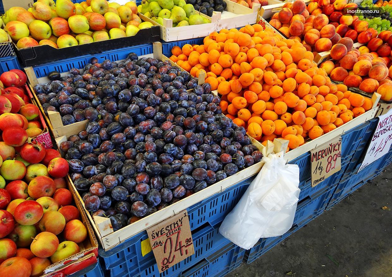 Слива и абрикосы в Чехии