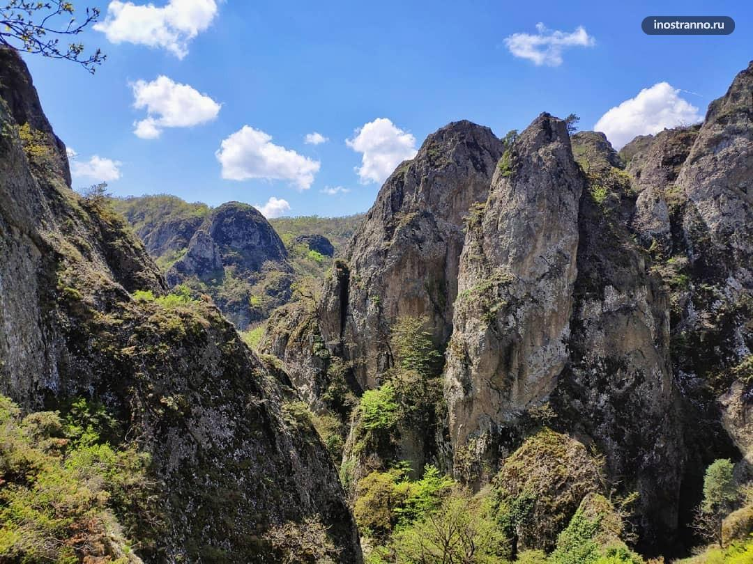 Каньоны Биртвиси природные красоты около Тбилиси