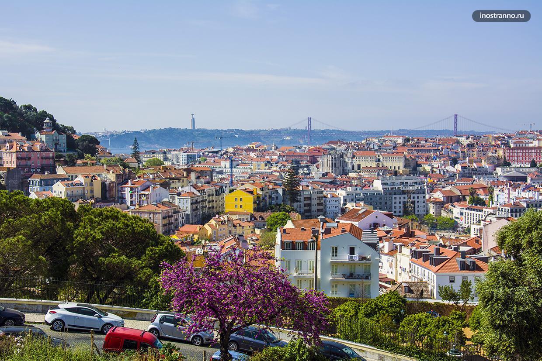 Сад Серка да Граса Лиссабон