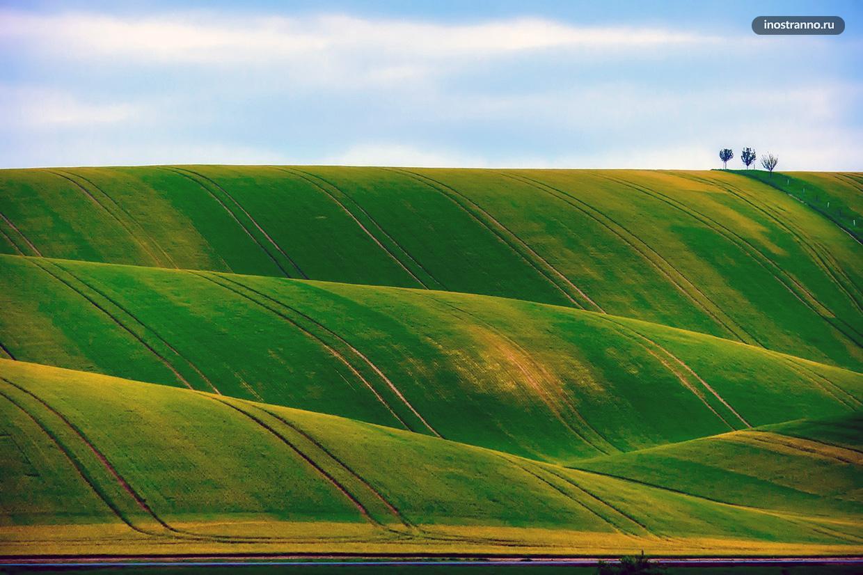 Красивые поля на Мораве в Чехии