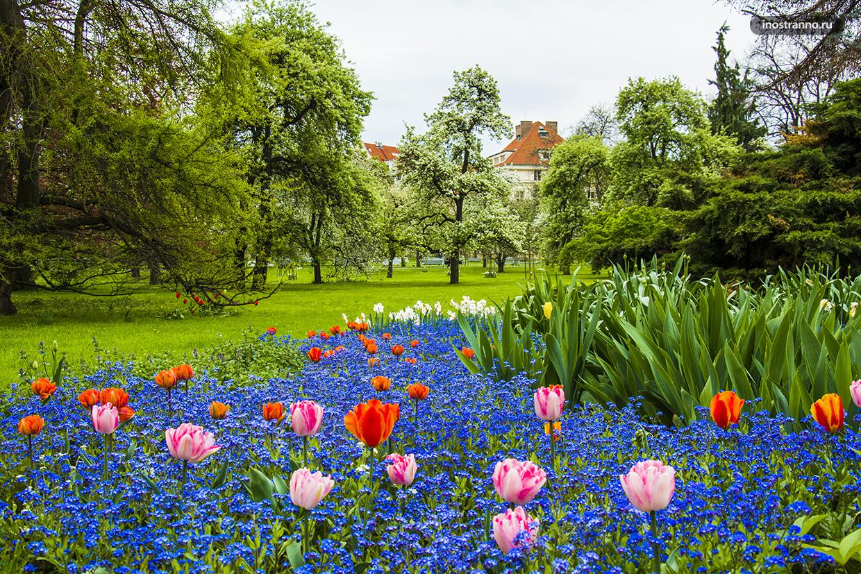 Парк с тюльпанами в Праге