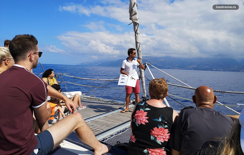 Морская прогулка на лодке в Фуншале