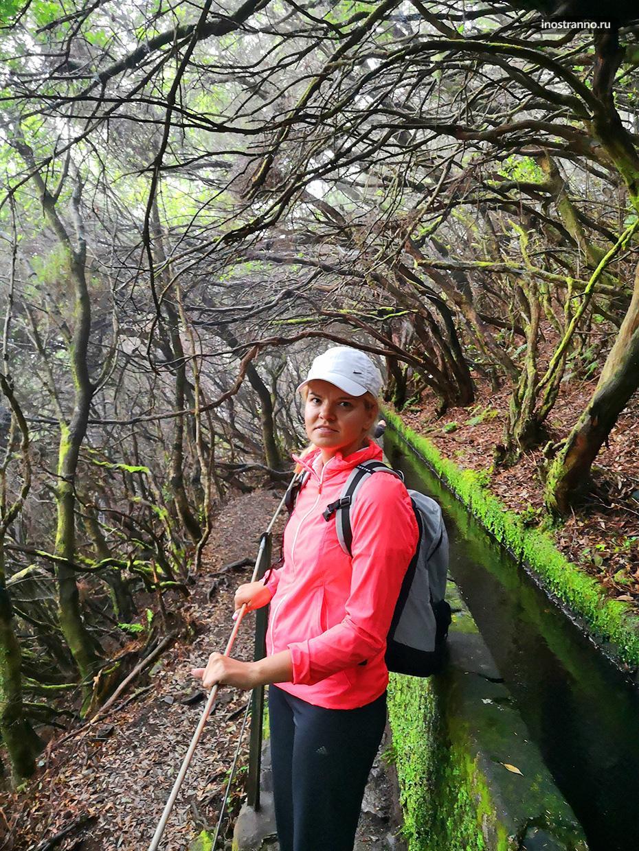 Экскурсия по левадам и водопадам Мадейры