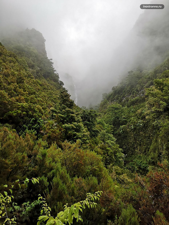 Экскурсия по водопадам Мадейры