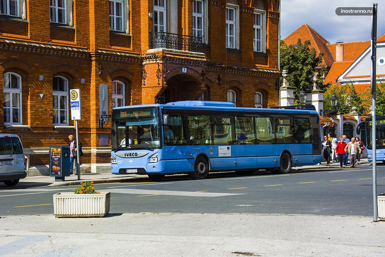 Городской автобус в Загребе
