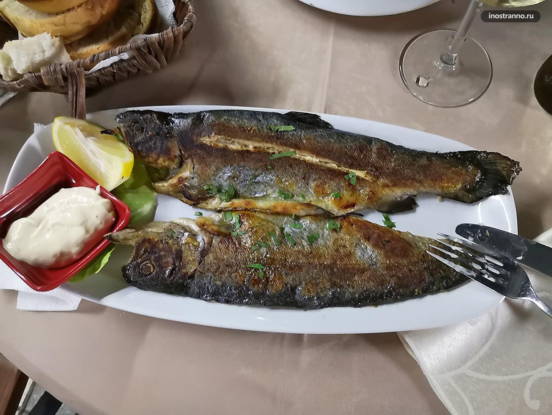 Ужин в Албании