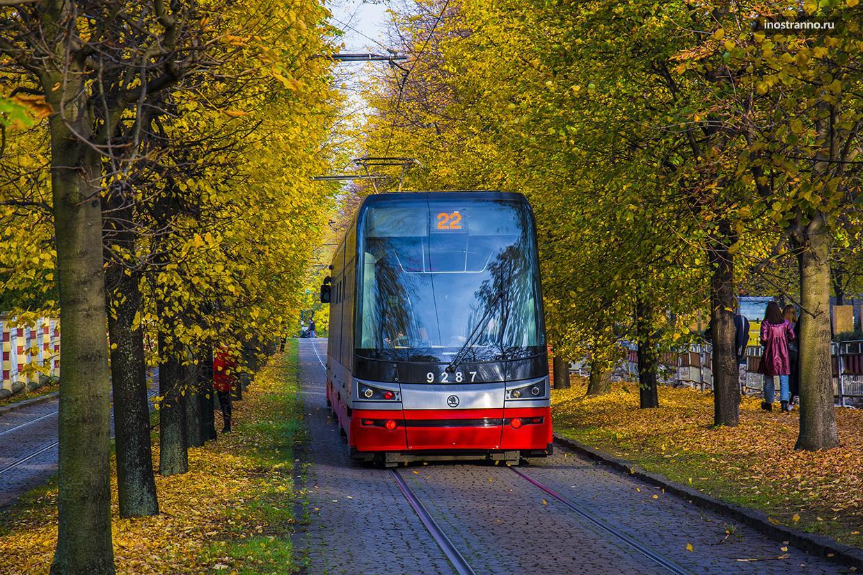 Трамвай №22 в Праге