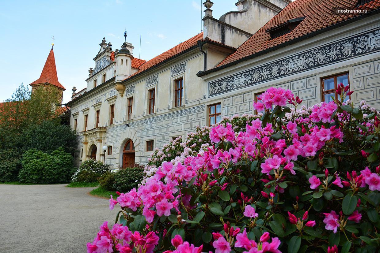 Замок Пругонице в Праге