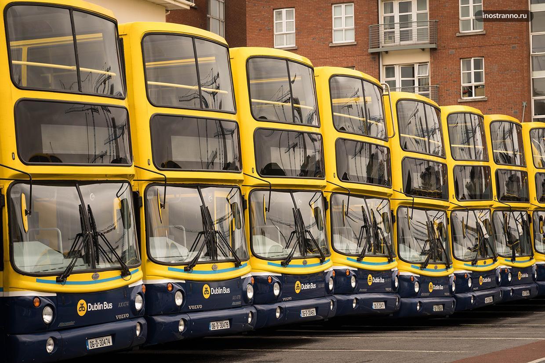 Автобусы в Дублине
