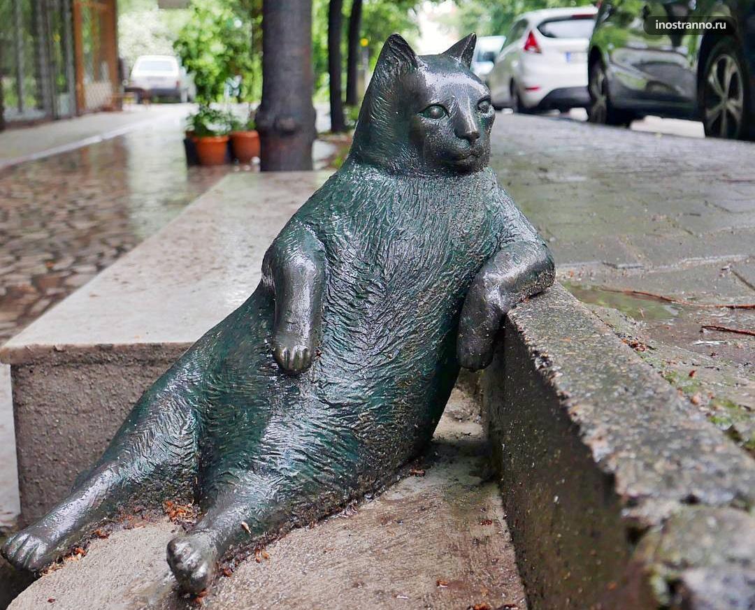 Памятник коту Томбили в Стамбуле