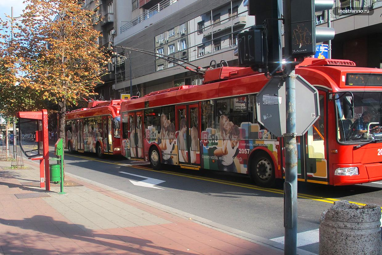 Троллейбусы Белграда