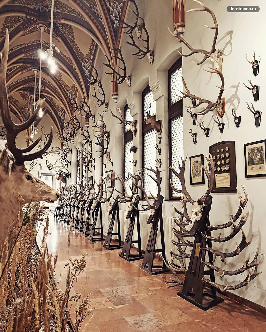 Музей сельского хозяйства в Будапеште