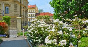 Цветущий Ботанический сад в Праге