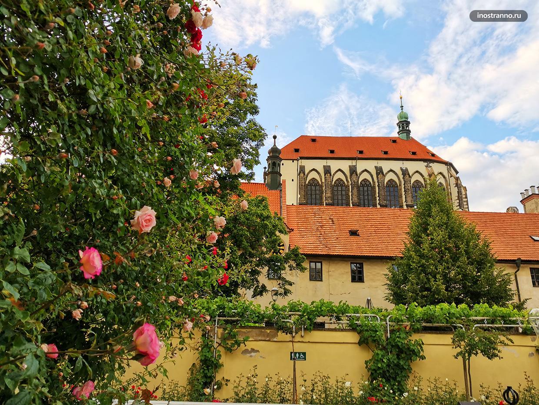 Что посетить в Праге - Францисканский сад