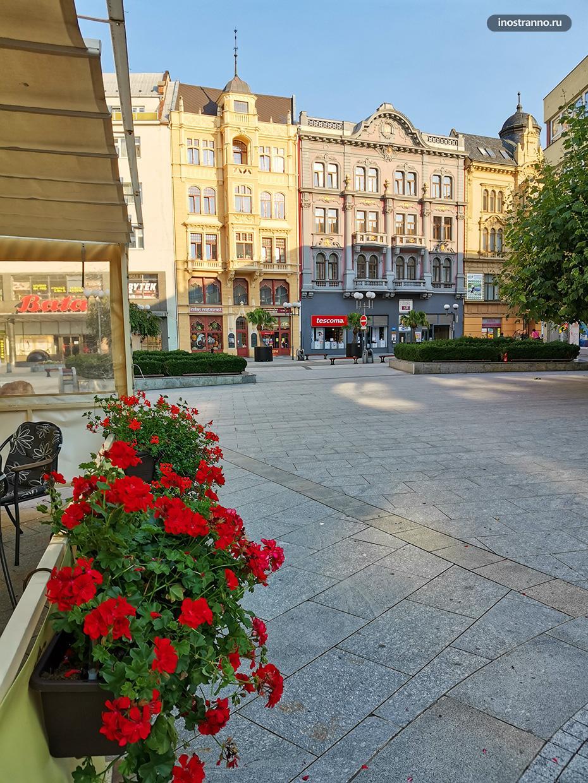 Летнее уличное кафе с цветами